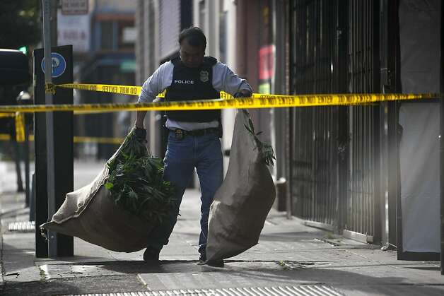 A federal agent carries bags of cannabis out of a building near Oaksterdam University. Photo: Sean Culligan, The Chronicle