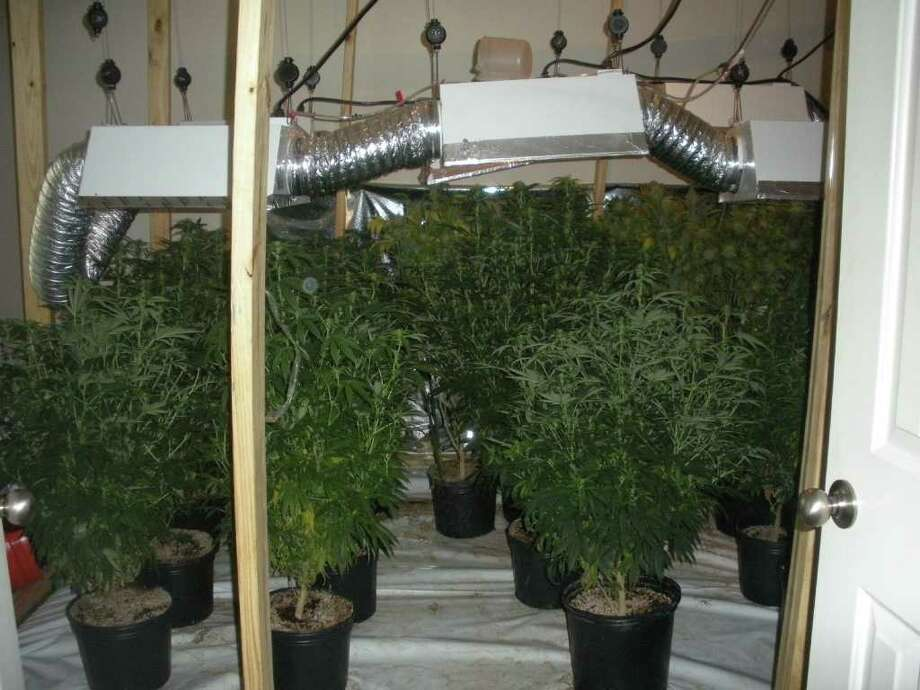 Marijuana grow house Photo: FBCO SO