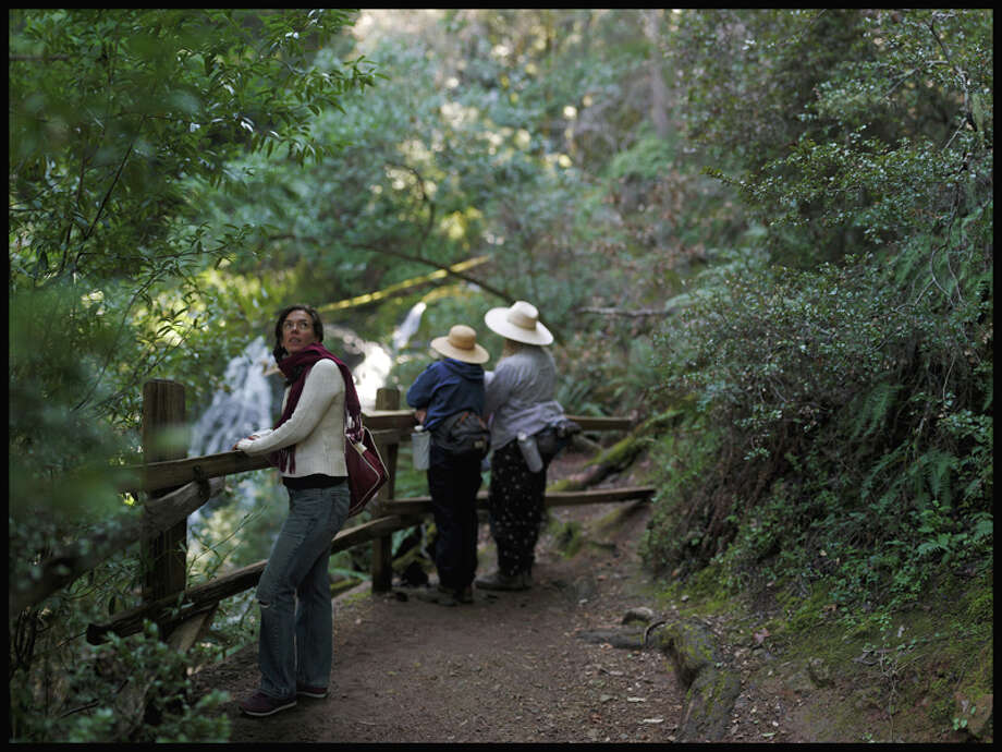 "And here's one steep hike to Cataract Falls from Fairfax-Bolinas Road, although there are many ways to get to the dramatic waterfall. We aren't 100 percent certain this file photo of a ""beautiful trail on the Fairfax approach to Mt. Tamalpais,"" but you get the idea. Parking is extremely limited at the Fairfax-Bolinas Road approach. Carpooling is a must! Photo: Artjones, Artjones / Reader Photo"