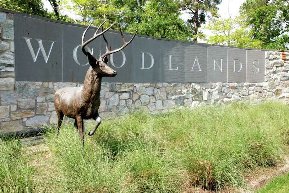 Several deer sculptures have been stolen recently in two separate locations in The Woodlands. One was taken from the entrance to Creekside Forest Drive at Gosling Road. The deer sculptures are each worth between $10,000 and $20,000. Photo: Lindsay Peyton