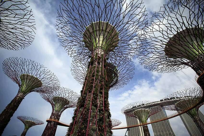 Supertrees which serve as vertical gardens stand tall in the almost completed Gardens by the Bay with the Marina Bay Sands hotel towers in the background Tuesday, April 3, 2012 in Singapore. It was a part of the city-state's efforts to bring and nurture greenery within the city and capture the essence of Singapore as a tropical city. (AP Photo/Wong Maye-E)