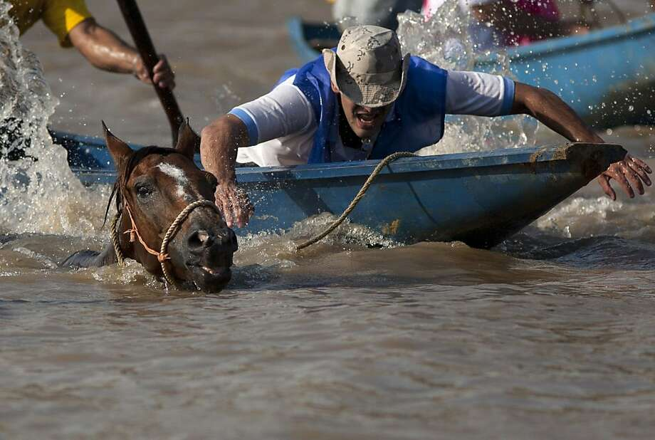 In this April 1, 2012 photo, a man leads his horse during a race across the Apure River in San Fernando de Apure, in Venezuela. Competitors on canoes race across the Apure River as their horses swim to commemorate a 1819 battle in which soldiers led by independence heroes Simon Bolivar and Gen. Jose Antonio Paez routed Spanish troops in a surprise attack after crossing the waterway. Photo: Ariana Cubillos, Associated Press