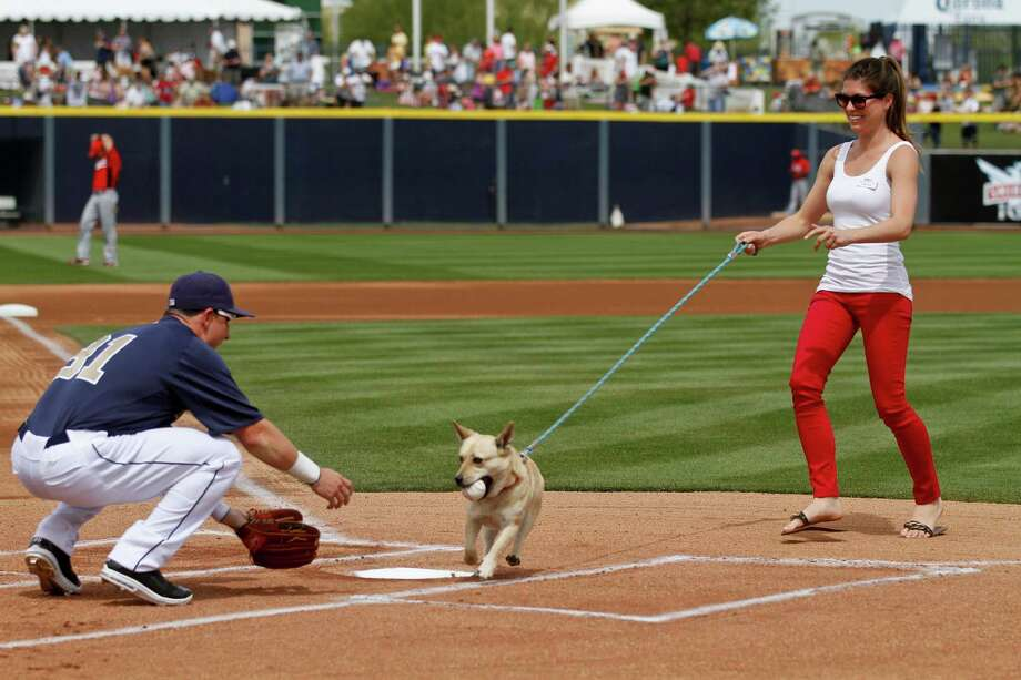 Lo, a two-year-old  corgi mixed breed dog, delivers the ball to San Diego Padres' Daniel Robertson, left, during the first pitch ceremony prior to the a spring training baseball game against the Cincinnati Reds, Saturday, March 24, 2012, in Peoria, Ariz. Lo's handler is Karen Scott, right, from the Humane Society and Robertson went two-for-two in the game. Photo: AP