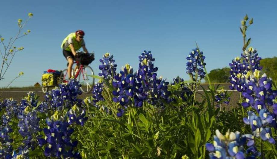 Bryan Gattis, of Falmouth, Maine, rides past a bunch of bluebonnets as he rides along US 290 Wednesday, March 31, 2010, in Brenham. Gattis is on a cross-country trek in an effort to raise money for a health clinic in southwest Kenya. Gattis, who is writing a blog about his ride at www.crossingforkenya.weebly.com,  started his ride on the north side of the Golden Gate Bridge in February. He is hoping to finish by May 1.  ( Brett Coomer / Chronicle ) (Houston Chronicle)