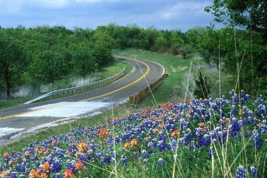 Bluebonnets field; grass; trees; roads (Texas Parks & Wildlife)