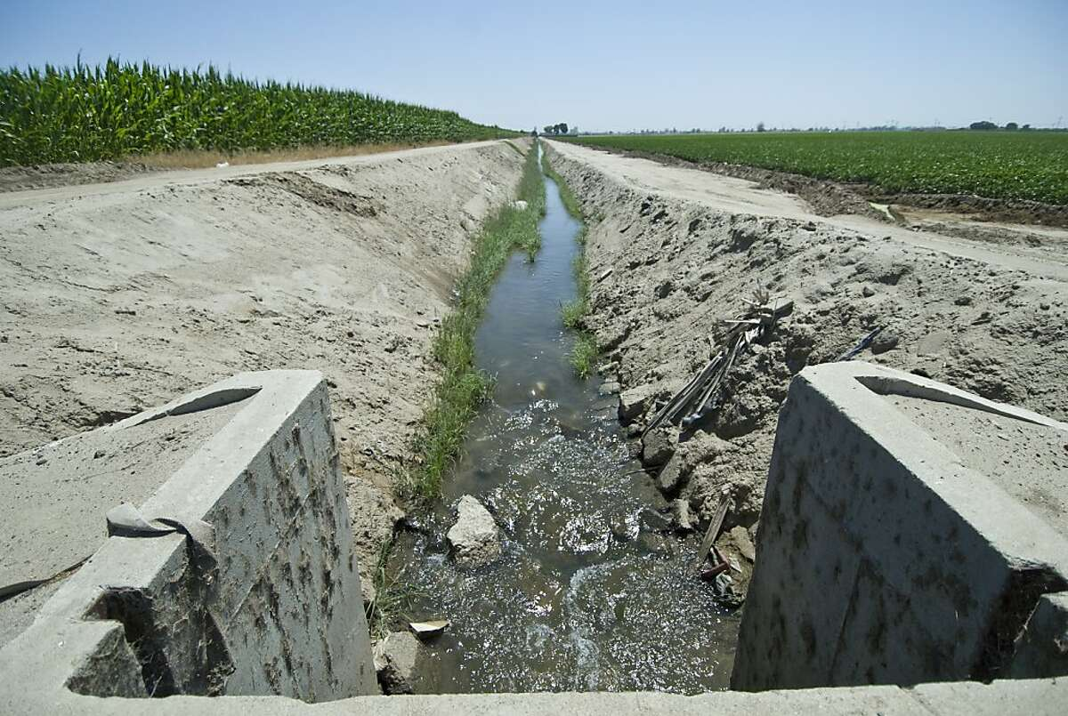 An irrigation ditch near the unincorporated neighborhood of Matheny Tract Ð about three miles from Tulare's city center Ð is bordered by farms and orchards.