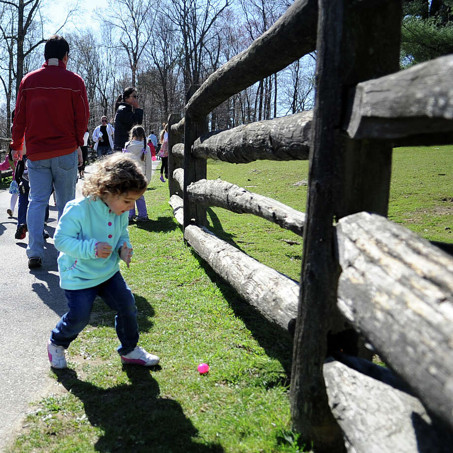 Ashley Pencu, 2, finds an egg during Saturday's 8th annual Easter Egg Hunt at Heckscher Farm at the Stamford Museum and Nature Center on April 7, 2012. Photo: Lindsay Niegelberg / Stamford Advocate