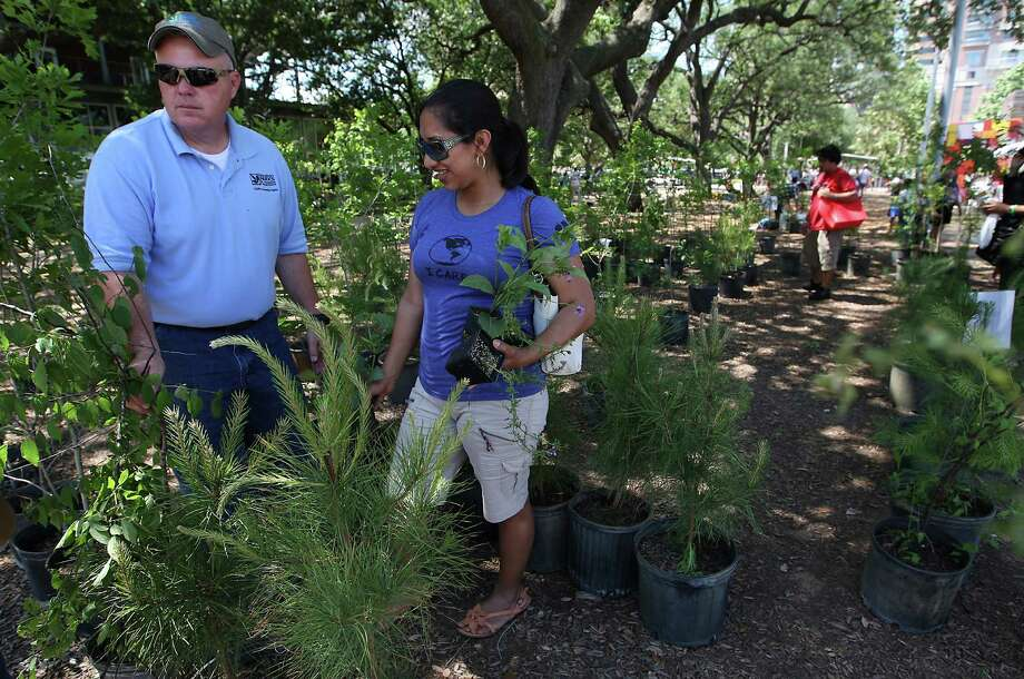 Cecia Osorio picks out a free tree with the help of Patrick Kidd from the Houston Parks and Recreation booth during the Waste Management Earth Day Houston Festival at Discovery Green, Saturday, April 7, 2012, in Houston. The Houston Parks and Recreation gave away 300 trees donated by Apache Corp, and hundreds of free drought resistant plants. Photo: Karen Warren, Houston Chronicle / © 2012  Houston Chronicle