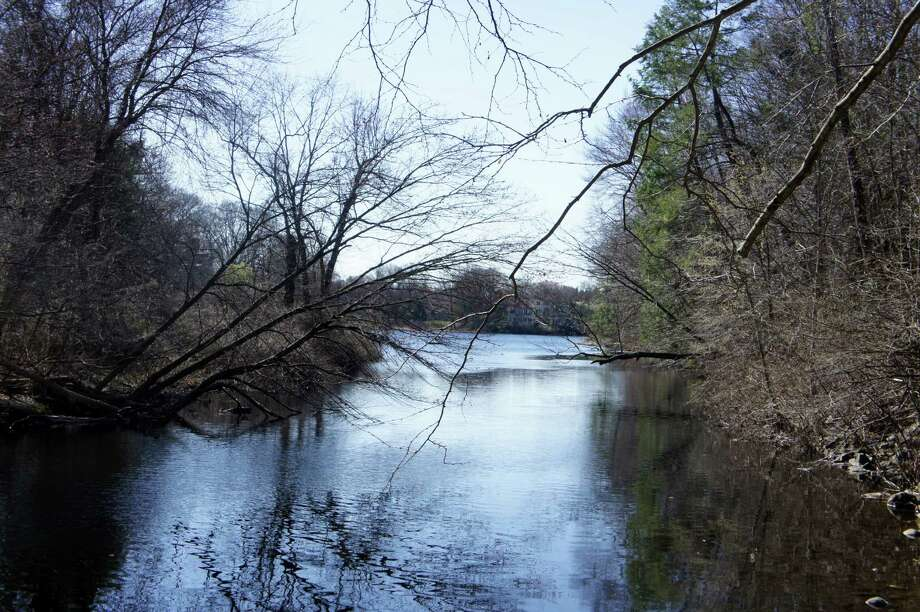 A view of Lee's Pond from the Westport Weston Family Y's Mahackeno campus. The Y withdrew on Monday, April 9, 2012 an application to the town's Water Pollution Control Authority to build a sewer line underneath the pond to Mahackeno. Photo: Contributed Photo / Westport News contributed