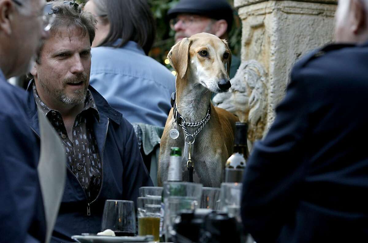 Gary Ellis, left, and his dog Wilco, a Saluki, enjoy dinner at Zazie restaurant in San Francisco.