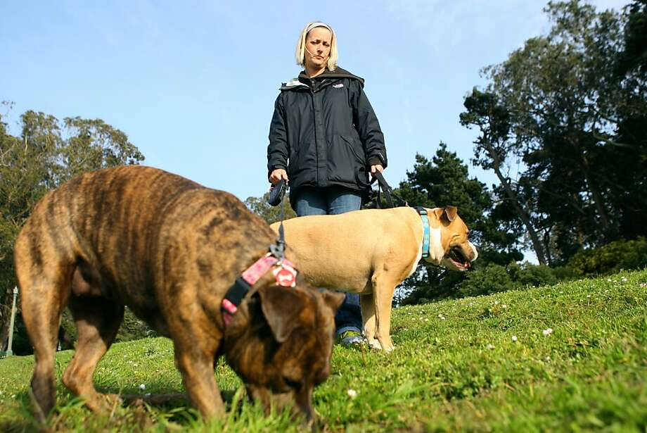 Haley Bratton walks her dogs in Golden Gate Park near the buffalo paddock on Monday, April 9, 2012. Bratton and her two dogs were confronted by a coyote during a morning walk on April 5th near the buffalo paddock. Photo: Erik Verduzco, The Chronicle