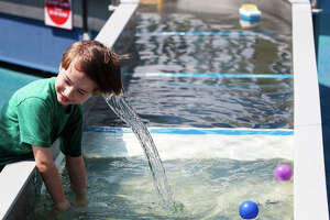 Children's Museum of Houston's  is a great experience for all those kiddies who love science.