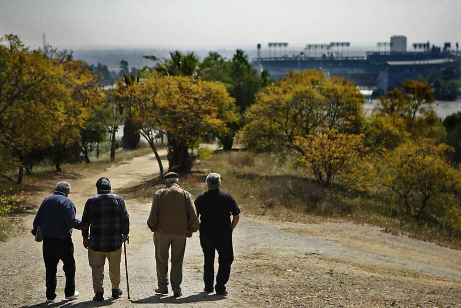From left, Tony Montez, 81, Pete Aurrutia, 80, Albert Elias, 80, and Alfredo Zepeda, 74, walk down a dirt path that overlooks Dodger Stadium in Los Angeles, California, on March 14, 2012. Montez, Aurrutia, Elias and Zepeda, along with members of their families, were evicted from their homes in the area in 1951 to make way for the stadium. (Genaro Molina/Los Angeles Times/MCT) Photo: Genaro Molina, McClatchy-Tribune News Service