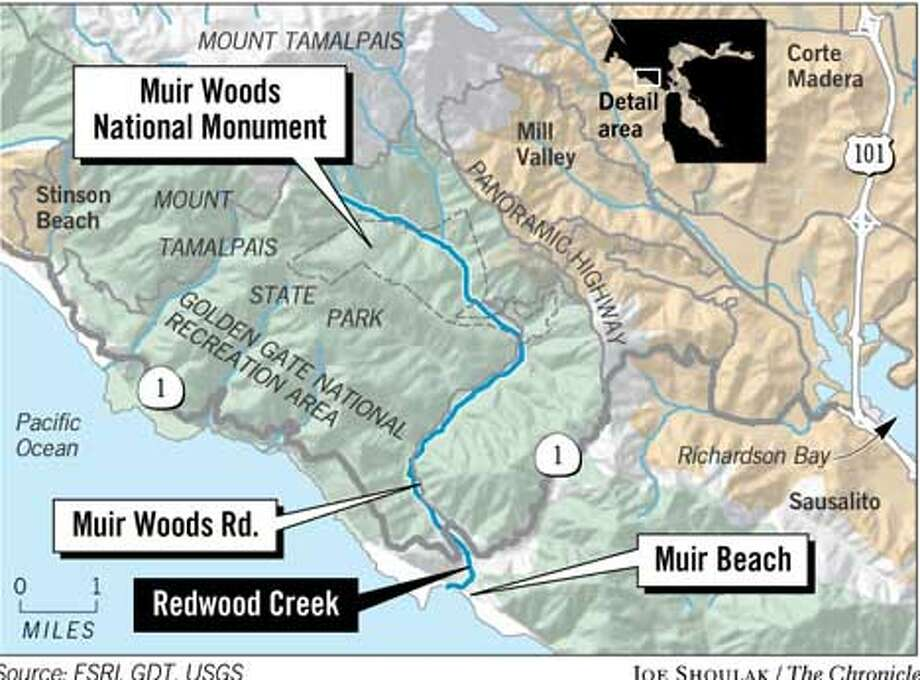 Muir Woods National Monument and the Golden Gate National Recreation Area. Chronicle Graphic by Joe Shoulak