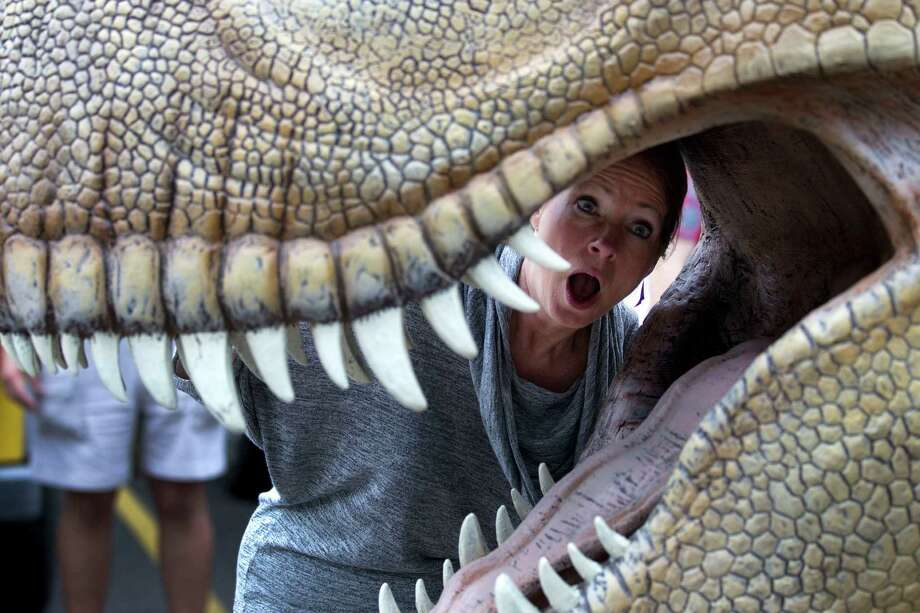 Deborah Cannon, President and CEO, Houston Zoo, poses for a photo inside the jaws of a Tyrannosaurus Rex during the unloading of more than a dozen animatronic dinosaurs in preparation for 'Orkin presents DINOSAURS! at the Houston Zoo' Monday, April 16, 2012, in Houston. The exhibit is scheduled to open May 4. DINOSAURS! debuted at the Houston Zoo in 2010 and drew more than 800,000 people from Memorial Day to the end of October. This time around, the exhibit will feature 18 dinosaurs, including the return of the popular T-Rex. All the dinosaurs on display are ones that lived in Texas, said Brian Hill, zoo spokesman. Photo: Brett Coomer, Houston Chronicle / © 2012 Houston Chronicle