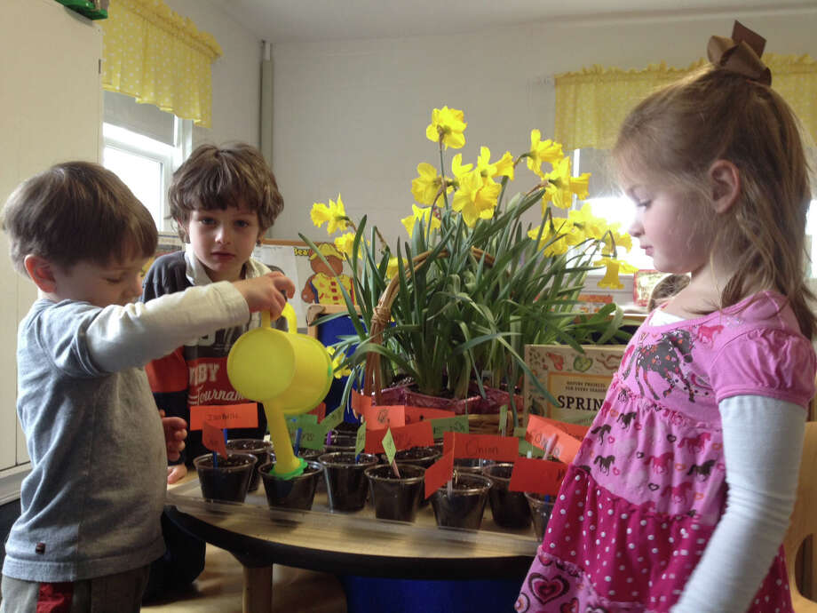 United Methodist Preschool children water their plants for spring. The school is hosting a spring boutique Friday. Photo: Contributed Photo