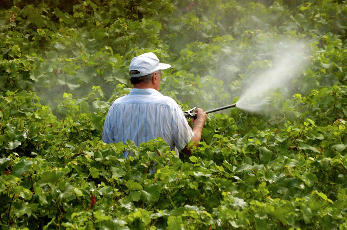 """""""Pesticide drift"""" is an insidious threat to human health as well as to wildlife and ecosystems in and around agricultural and even residential areas where harsh chemicals are used to ward off pests. Children are especially vulnerable. Photo courtesy of iStock/Thinkstock"""