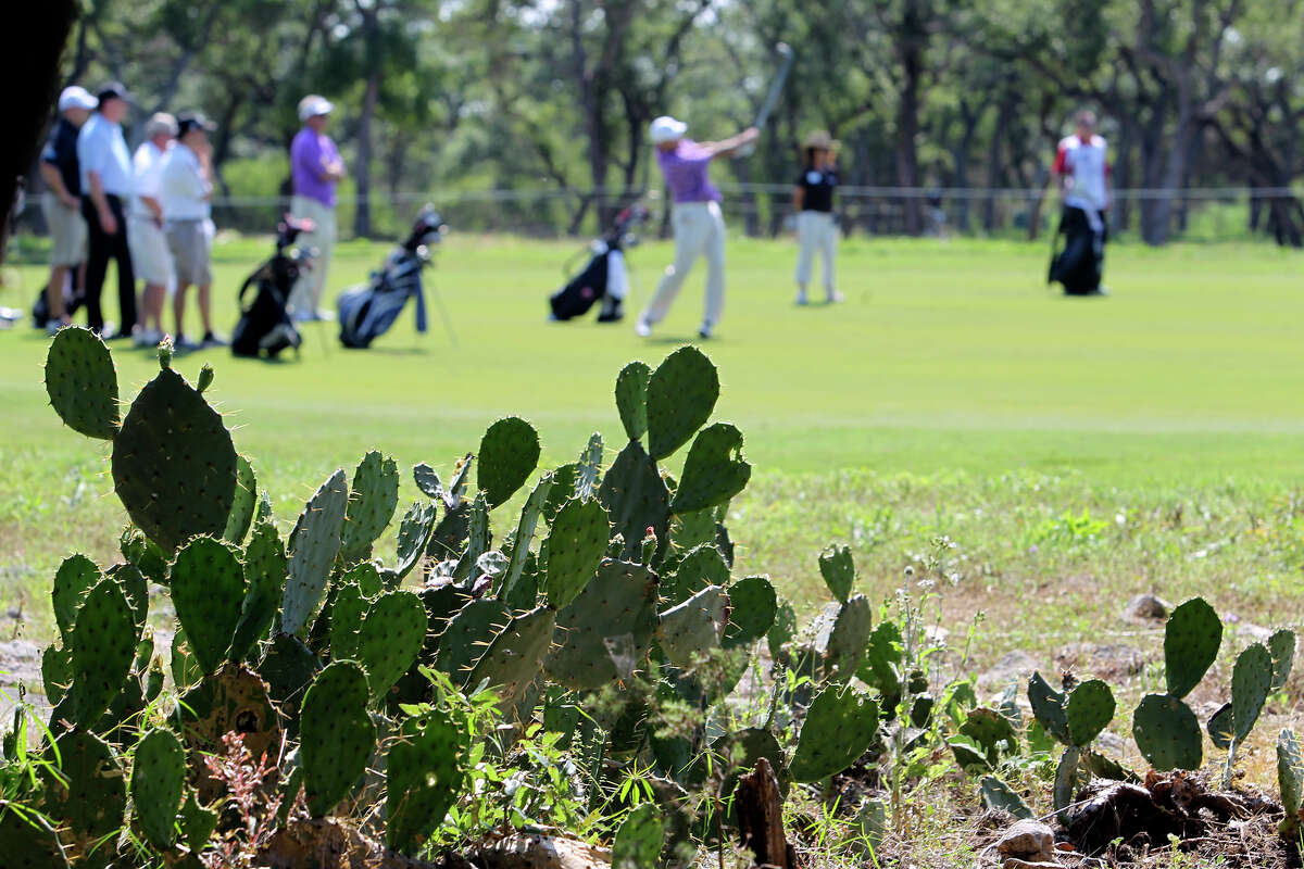 Cactus on a rock littered ground looms just off the fairway on 9 during the Oak Farms Dairy Pro-Am at the TPC Oaks Course on April 18, 2012. Tom Reel/ San Antonio EXpress-News