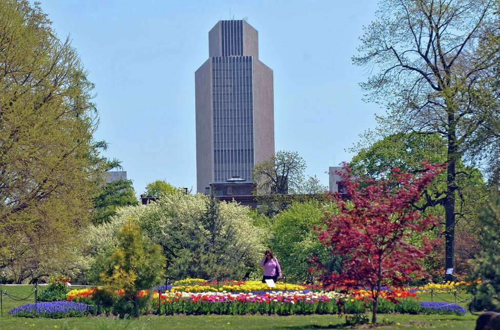 A visitor to Washington Park inspects the tulip beds, with the Corning Tower visible in the distance, on Thursday April 19, 2012 in Albany, NY. (Philip Kamrass / Times Union )