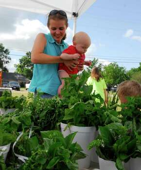 Sarah Starnes (77375) (holding six-month-old Dawson Starnes) is President of the Tomball Farmers Market and also sold a variety of herbs at the market Saturday 6/13/09. Photo: Tony Bullard / Freelance