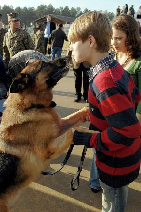 Lex, a German shepherd, was adopted by the family of his handler, Cpl. Dustin Lee. Lex is with Camryn Lee here. Photo: Walter Petruska / AP2007