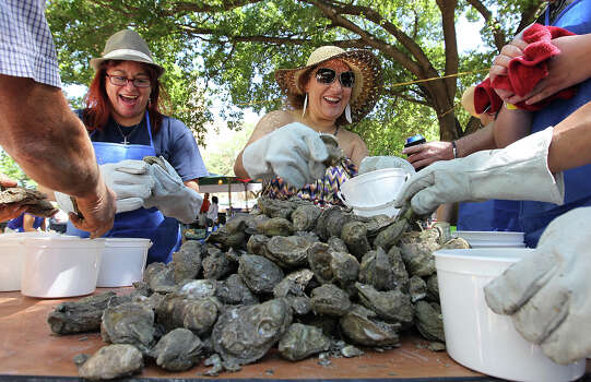 Volunteers Rachel Garcia (left) and Alice Nañez join others to help fill buckets with oysters at the 2012 Fiesta Oyster Bake at St. Mary's University on Saturday, Apr. 21, 2012. Proceeds from the event go toward scholarships and university programs. Kin Man Hui/Express-News. Photo: Kin Man Hui, San Antonio Express-News / ©2012 San Antonio Express-News