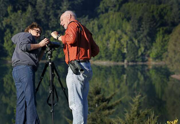 Birdwatchers Denise Hahn, left, and Dennis Prout set up a spotting scope, hoping to catch a glimpse of a pair of bald eagles nesting by Crystal Springs Reservoir near Hillsborough, Calif. on Friday, April 20, 2012. Photo: Paul Chinn, The Chronicle