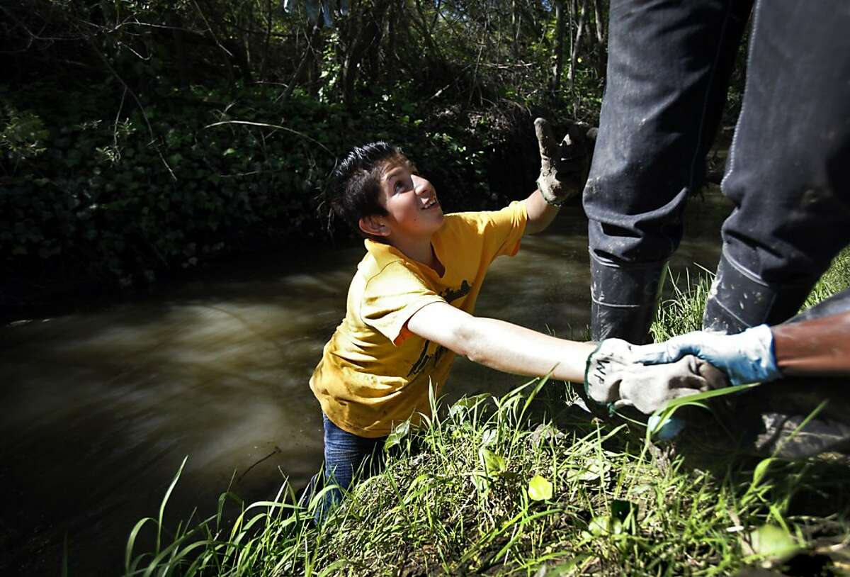 Rios Jose, 15, looks for a hand out of the creek while picking up garbage for Earth Day in Richmond, Calif., Saturday, April 21, 2012.