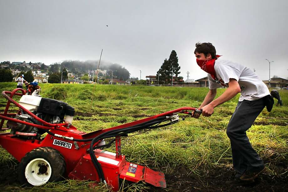 A masked occupier pushes a large rototiller across a patch of arable land at the intersection of Buchanan and Jackson in Albany on Sunday. Several hundred people occupied a tract of arable land in Berkeley on Sunday where they tilled soil and planted seeds for a community garden. Photo: Kevin Johnson, The Chronicle
