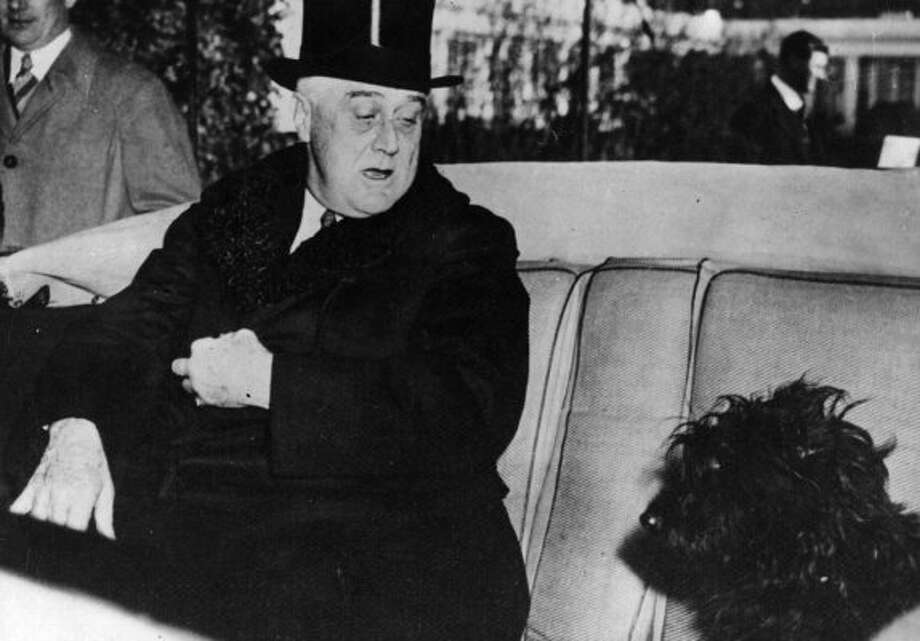 In a famous speech, Franklin D. Roosevelt mocked Republicans for attacks on his dog Fala. (Getty Images)