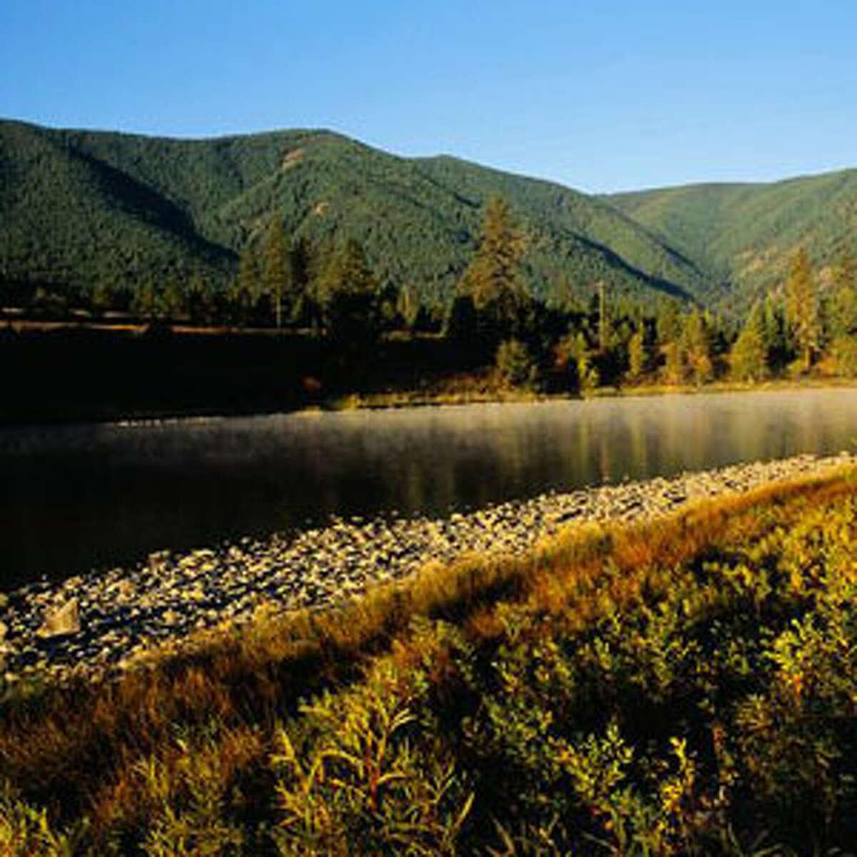 46. Montana