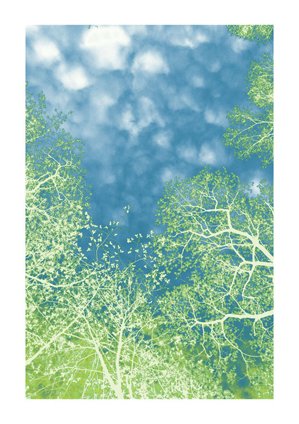 """Nancy Woodward's """"The First of May,"""" varnished archival pigment print on tissue, is on display at the Darien Nature Center's """"EarthWorks"""" exhibit."""