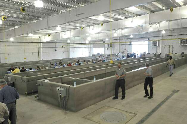 New hatchery will load texas waters with millions of fish for Fish hatchery texas