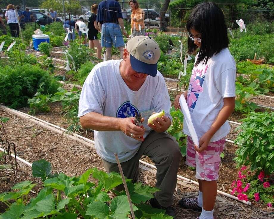 Bexar County Master Gardener Mario Santos and a young gardener examine a yellow squash at the Children's Garden. Photo: Lou Kellogg