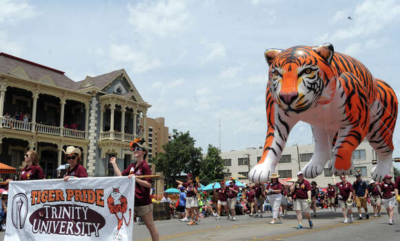 The Trinity University Tiger balloon makes its way along Broadway during the Battle of Flowers Parade on April 27, 2012. Photo: BILLY CALZADA, Billy Calzada / Express-News / San Antonio Express-News