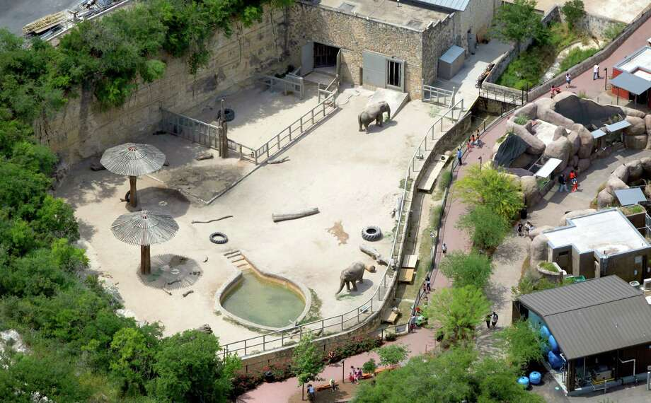 Lucky and Boo, the San Antonio Zoo's Asian Elephants, are seen in the zoo's elephant enclosure in this April 10, 2012 aerial photo.  Photo: William Luther, San Antonio Express-News / © 2012 WILLIAM LUTHER