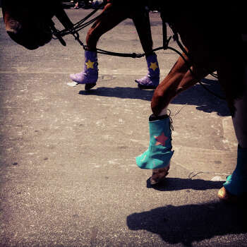 Horses with the Guadalupe County Fair Association from Seguin walk on Broadway during the Battle of Flowers Parade on Friday, April 27, 2012. Photo made with iPhone 4 and processed with Instagram filters. Photo: Lisa Krantz, San Antonio Express-News / SAN ANTONIO EXPRESS-NEWS