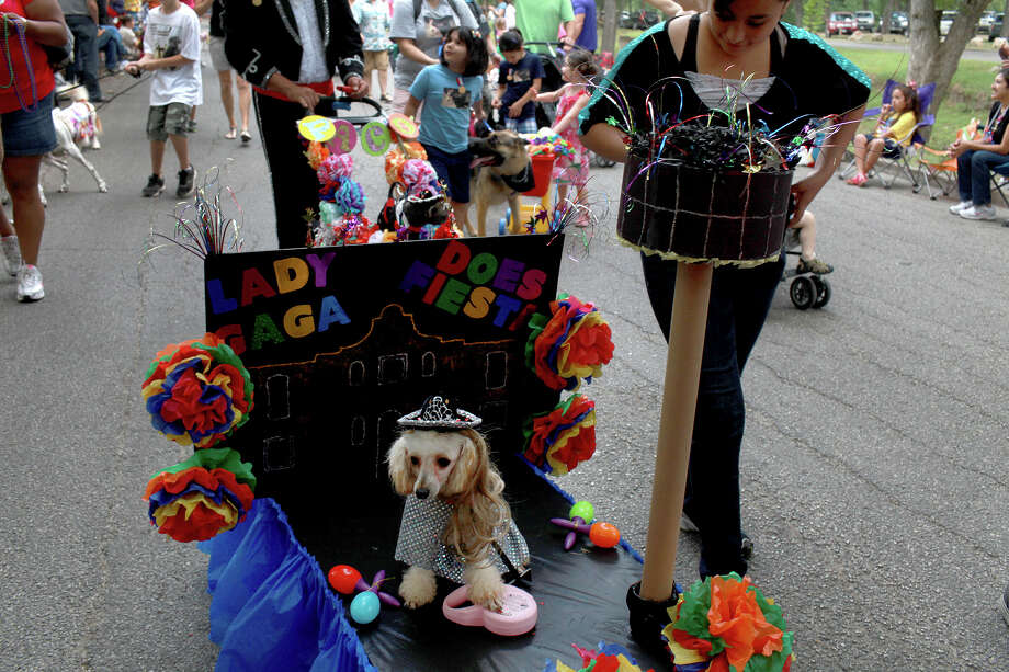 "Eva, owned by Libby Medellin, not pictured, rides on her ""Lady Gaga Does Fiesta"" float during the Fiesta Pooch Parade in Alamo Heights on Saturday, April 28, 2012. Photo: Lisa Krantz, SAN ANTONIO EXPRESS-NEWS / SAN ANTONIO EXPRESS-NEWS"