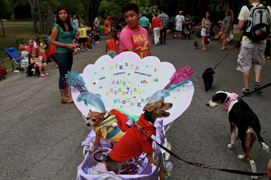 "With ""The Little Mermaid"" theme, Gizmo, left, dressed as Flounder, and Sebastian, right, as Sebastian, ride with Chanel, as Ariel, during the Fiesta Pooch Parade in Alamo Heights on Saturday, April 28, 2012. They are with owner Addie Campos, not pictured. Photo: Lisa Krantz, SAN ANTONIO EXPRESS-NEWS / SAN ANTONIO EXPRESS-NEWS"