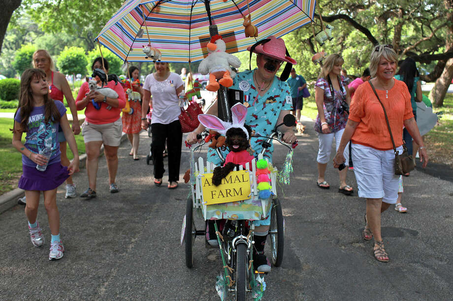 "Fiesta Pooch Parade Costume Contest ""Best of Show"" winner Teena Starr Larson rides with her dog Hershey in the front while her other dog, Pooh Bear, rides in the back, not pictured, during parade through Alamo Heights on Saturday, April 28, 2012. Photo: Lisa Krantz, SAN ANTONIO EXPRESS-NEWS / SAN ANTONIO EXPRESS-NEWS"