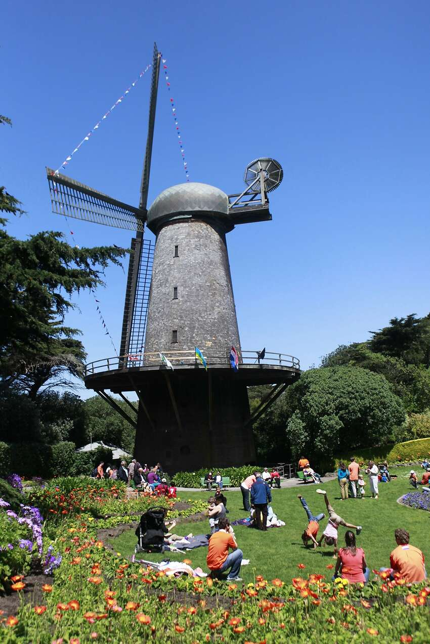 Celebrating Queen's Day near the Dutch Windmill in Golden Gate Park in San Francisco, California , on Saturday, April 28th, 2012.