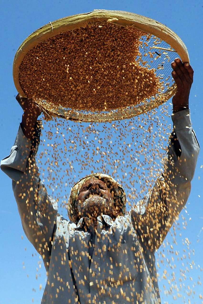An Indian labourer uses a sieve to separate grains of wheat from the husk at a grain market on the outskirts of Amritsar on April 30, 2012, on the eve of International Labour Day. Countries across the world celebrate May 1, as International Labour Day. TOPSHOTS AFP PHOTO/NARINDER NANUNARINDER NANU/AFP/GettyImages