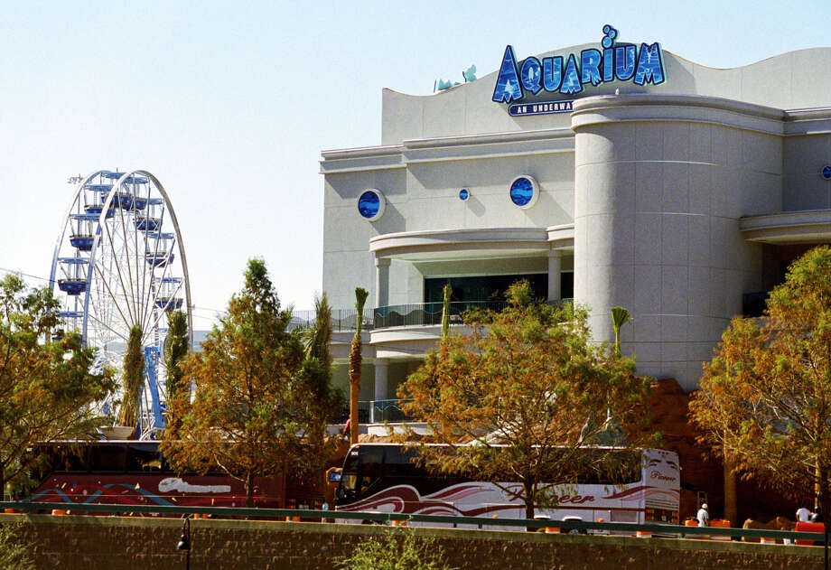 Downtown Aquarium:One of three of Landry's Restaurants-owned entertainment centers offer amusement-park rides, midway games, a variety of dining options and specialty shops. These family-friendly venues frequently host events ranging from beer and wine festivals to live music. 410 Bagby, aquariumrestaurants.com. -Syd Kearney Photo: Steve Campbell / Houston Chronicle