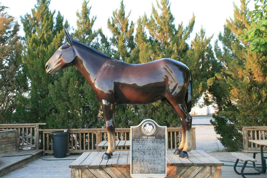 A mule named Ol' Pete was the model for the National Mule Memorial in Muleshoe. The talking mule thinks Texas needs at least one more mule statue. Photo: Alice Liles