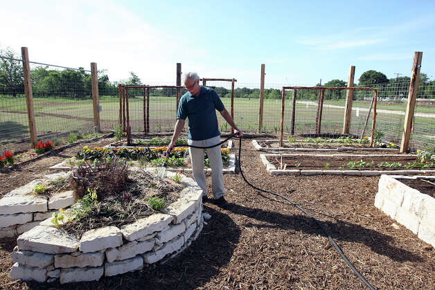 SA LIFE  -- Volunteer Mark Mason waters a keyhole garden at The Herff Farm at the Cibolo in Boerne, Thursday, April 26. 2012. The farm is part of the Cibolo Nature Center and will serve as an outdoor classroom for teaching sustainable living. Jerry Lara/San Antonio Express-News Photo: JERRY LARA / © 2012 San Antonio Express-News