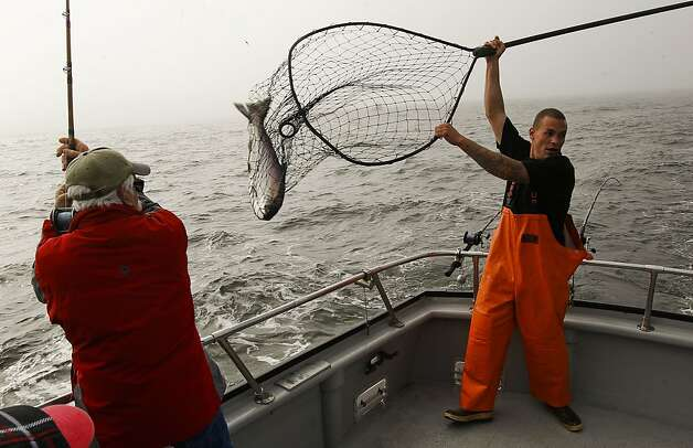 "Fisherman, Norm Steiner, gets help netting his Chinook (king) salmon from deck hand, Bobby Gallia, as the sport fishing boat, ""Hog Heaven"" out of Sausalito with a full load of anglers aboard, fishes for salmon along the Pacific Ocean off the coast of  San Francisco, Ca., on Saturday April 21, 2012. Photo: Michael Macor, The Chronicle"