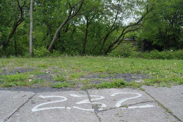 Spray paint marks the lot number on an empty lot on the south side of Orange St. on Wednesday, May 2, 2012 in Albany, NY.  Habitat for Humanity has plans to remake the entire neighborhood, rehabbing some buildings and building new structures on some of the empty lots.  (Paul Buckowski / Times Union) Photo: Paul Buckowski