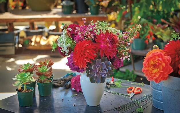 "The Succulent Mixed Bouquet, from ""The 50 Mile Bouquet,"" by Debra Prinzing Photo: David E. Perry"