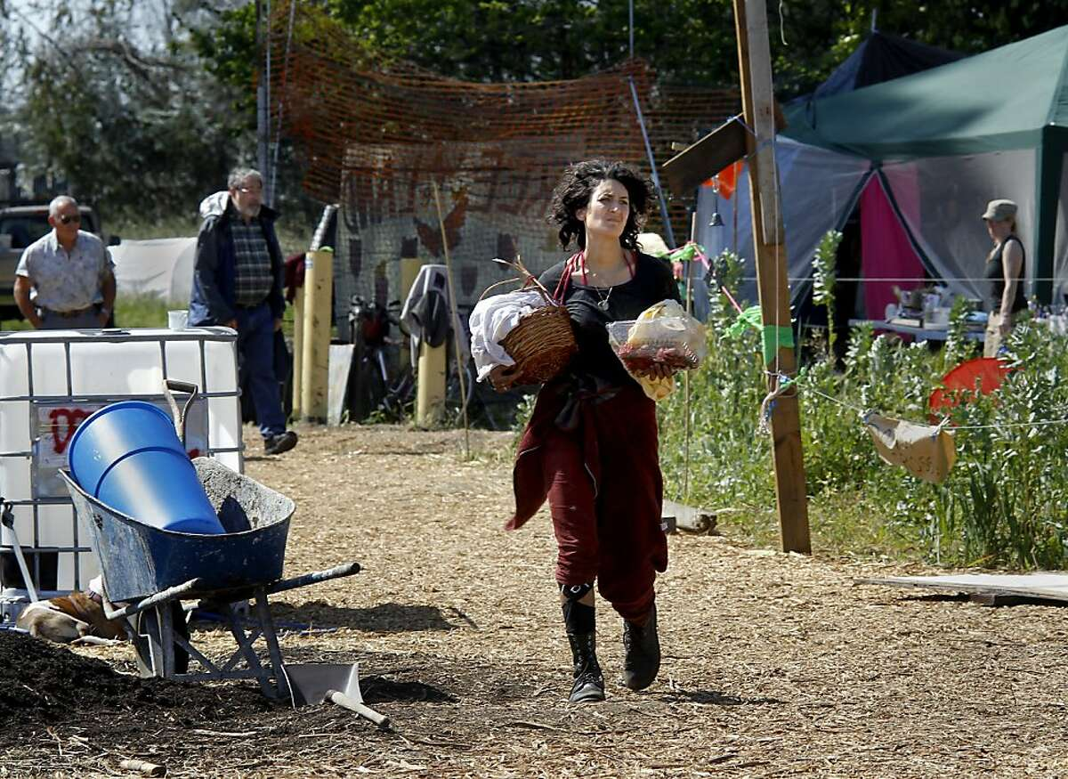 Neighbors and supporters continue to bring water and food to the garden. Despite rumors of a crackdown on the garden planted by Occupy forces at UC's experimental garden facility in Albany, Calif., farming went on although the water is still shut off.