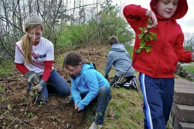 America's Miss New York Kelly Slingerland, left, pulls brush and weeds while volunteering her time at the Albany Pine Bush Discovery Center along with Emily Fredericks, 8, second from left, and her stepbrothers Jordan Bocketti, 8, second from right,  and his brother Noah, 6, right,  of Schenectady, on Sunday April 22, 2012 in Albany, NY. (Philip Kamrass / Times Union ) Photo: Philip Kamrass / 00017359A
